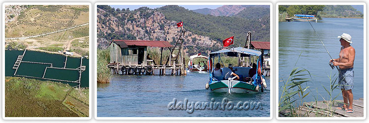 fishing in dalyan